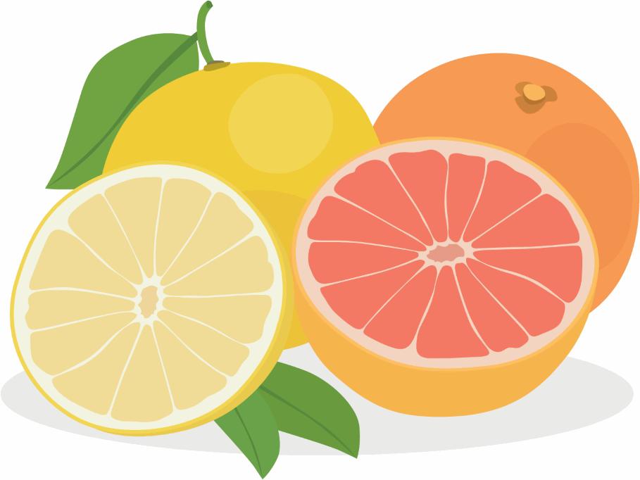 Grapefruiteigenschaften zur Gewichtsreduktion